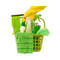 ORGANIC CLEANING FOR HEALTHY CLEANING!